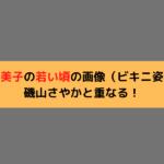 宮崎美子の若い頃の画像(ビキニ姿)が磯山さやかと重なる!